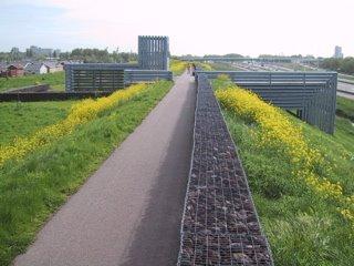 Rotterdam, 'Monument voor operatie Manna'